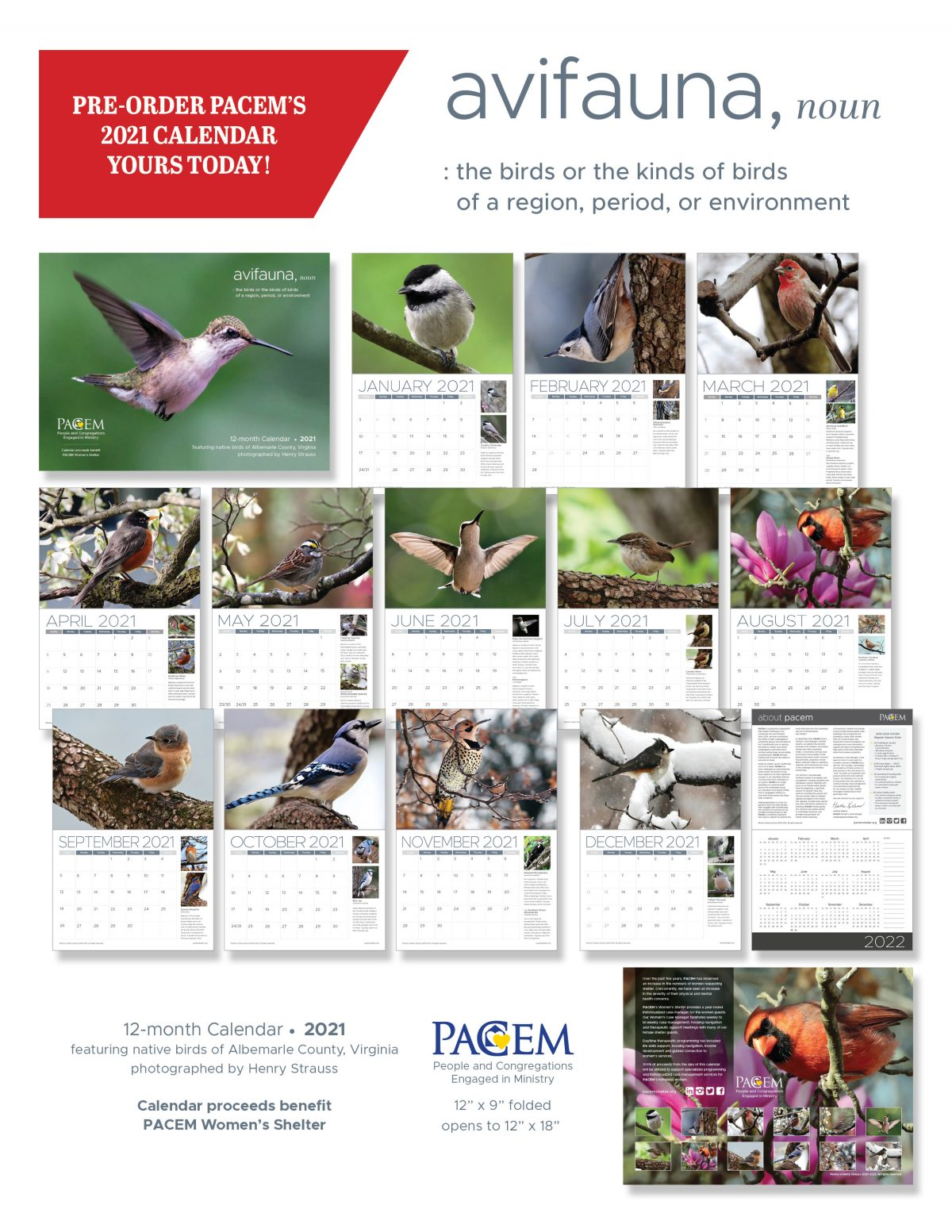 ORDER PACEM'S 12-month 2021 CALENDAR, featuring native birds of Albemarle County, Virginia